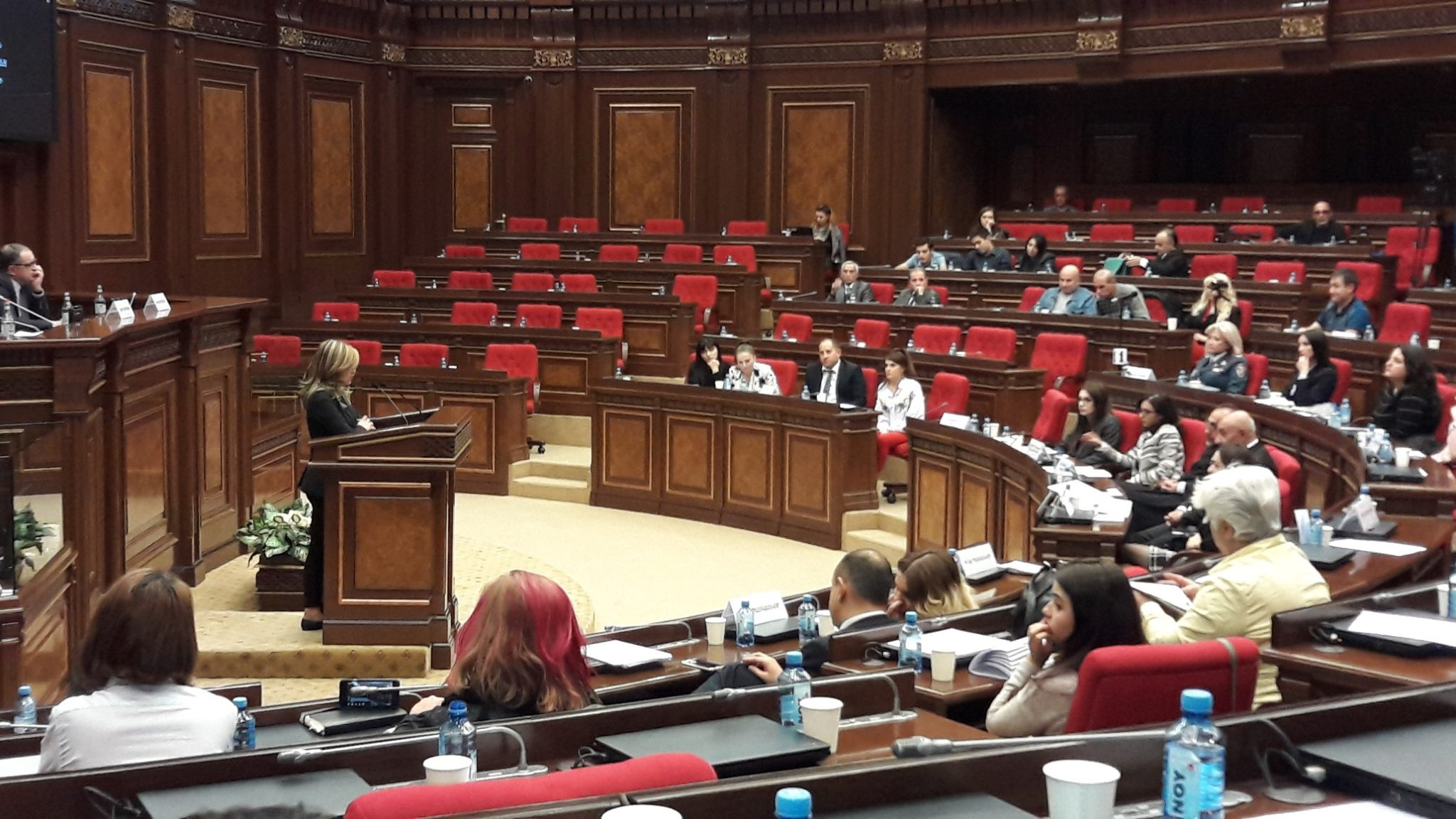 Years of struggle by the Armenian women's movement have finally resulted in a law against gender-based violence.